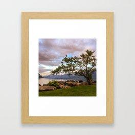Scenics - Nature Framed Art Print
