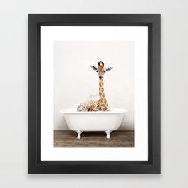 Skeptic Giraffe in a Vintage Bathtub (c) Framed Art Print