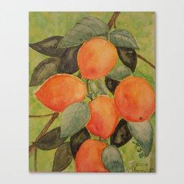 Peaches Canvas Print