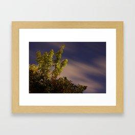 Tree Game Framed Art Print