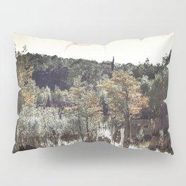 Dead Lakes Grunge Style Pillow Sham