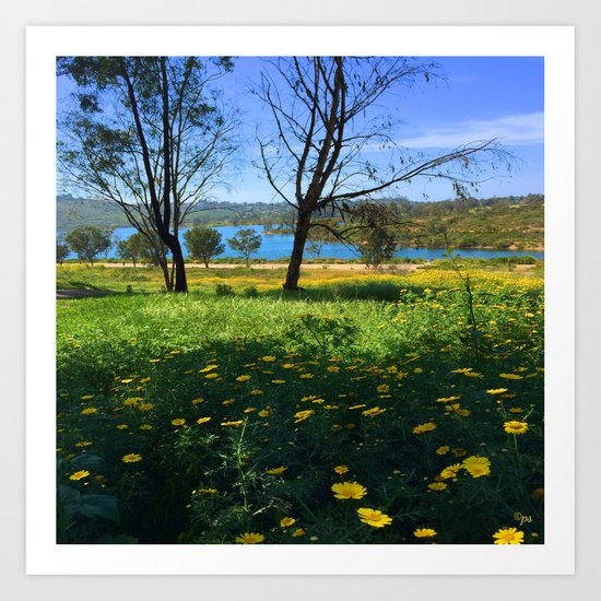 Springtime Comes to Lake Murray, La Mesa, CA Art Print