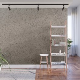 Clay Sandstone Wall Mural