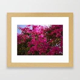 LANY VIBES Framed Art Print