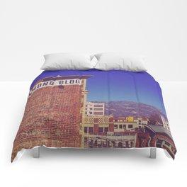 Raymond Comforters