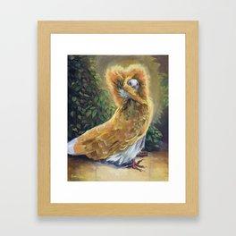 Jacobin Pigeon - Acrylic Paintig Animal Art / Bird Art Framed Art Print