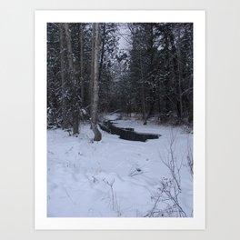 #406 BR CK UNDER ICE FORMATIONS,  POND CRK BITTERROOT MT Art Print