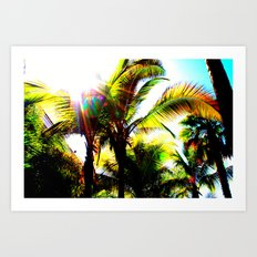 Sunny Florida Art Print