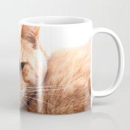 Red cat watching Coffee Mug