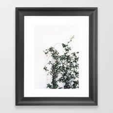 Trellis greenery Framed Art Print