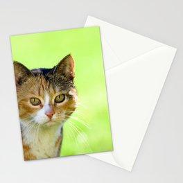 Beautiful mottled cat in garden. Stationery Cards