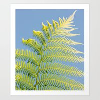 fern Art Prints featuring Fern by Pati Designs