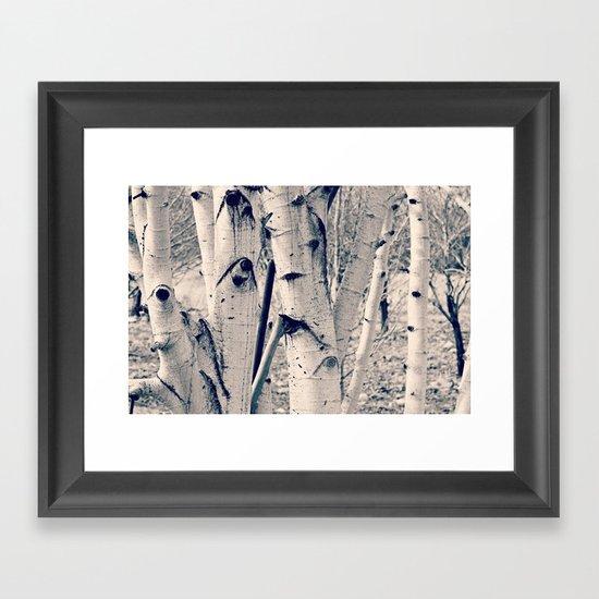 Forest Scene Framed Art Print