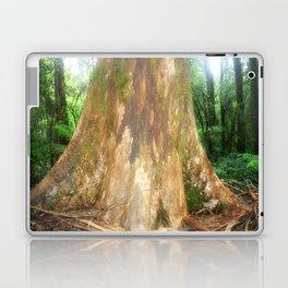 """Mountain Ash Tree (Aka """"The Big Boy"""") Laptop & iPad Skin"""