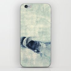Graphic Eye horse iPhone & iPod Skin