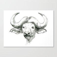 African buffalo sketch SK008 Canvas Print