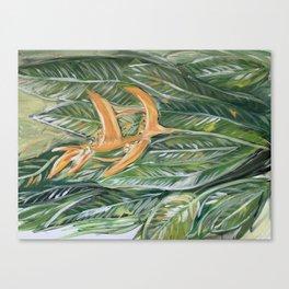Orange Heliconia Tropical Flowers Canvas Print