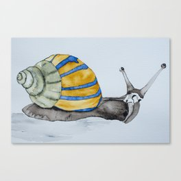 Colorful snail watercolor painting snail shell art Canvas Print