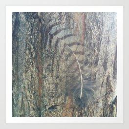 Bark Feather Art Print