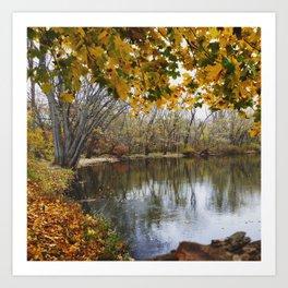 autumns bounty Art Print