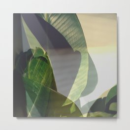 Jungalow, California Palms, Botanical Abstract, Modern Still Life, Mid Century, Green, Palms Metal Print
