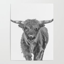 Black and White Cow Poster