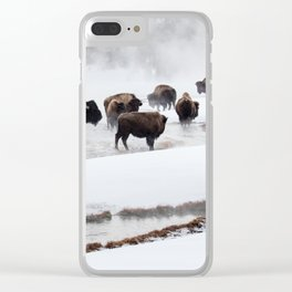 Yellowstone National Park - Bison Herd Clear iPhone Case