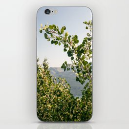 Aspen Leaves iPhone Skin