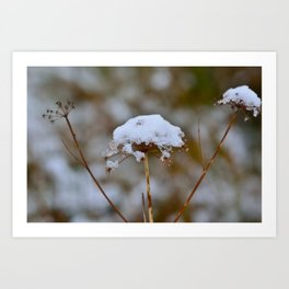 Snow Fall Art Print
