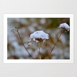 Snow Fall Art Print