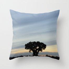 Striped prairie sky... Throw Pillow