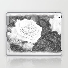 Pink Roses in Anzures 1 Charcoal Laptop & iPad Skin