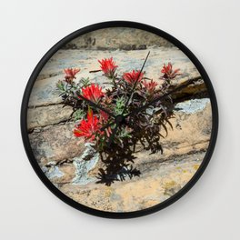Rough Indian Paintbrush (Zion National Park, Utah) Wall Clock