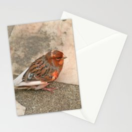 Lovely runaway canary bird Stationery Cards