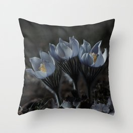 Three Things are not Easily Hidden Throw Pillow