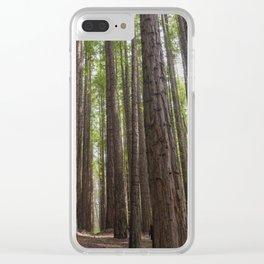 Hidden Path Clear iPhone Case
