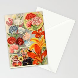 garden 063 Sweet Pea  Pansies  Carnation23 Stationery Cards