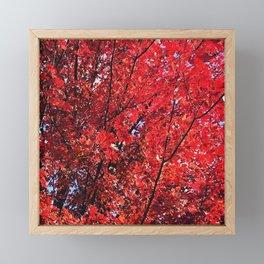 FallFeels Framed Mini Art Print