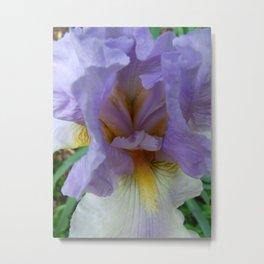 Iris Heart Metal Print