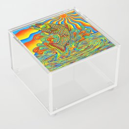 Psychedelic Rainbow Trout Fish Acrylic Box