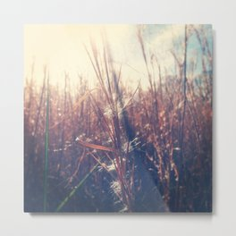 Clothed In Beauty.  Metal Print
