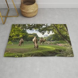a momentary lapse of reason Rug