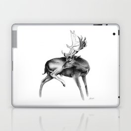Fallow Deer Stag Laptop & iPad Skin