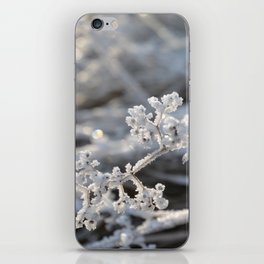 Frosted iPhone Skin