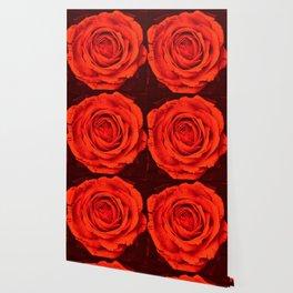Vintage Rose,red Wallpaper