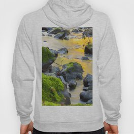 Grizzly Creek In The Fall Hoody