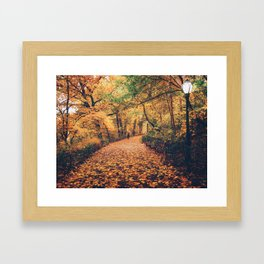 Autumn Walk New York City Framed Art Print