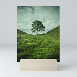 Sycamore Gap Hadrian's Wall Mini Art Print
