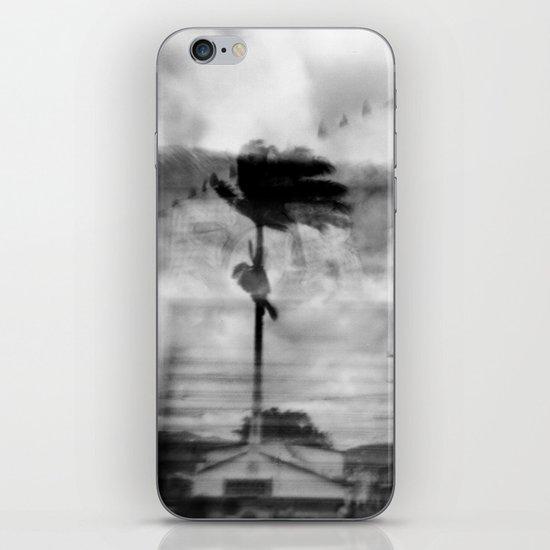 Bahian Palm iPhone & iPod Skin