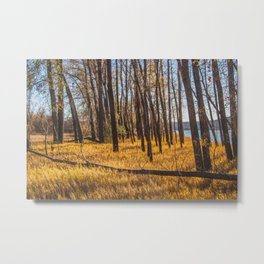 Downstream Campground, North Dakota 23 Metal Print